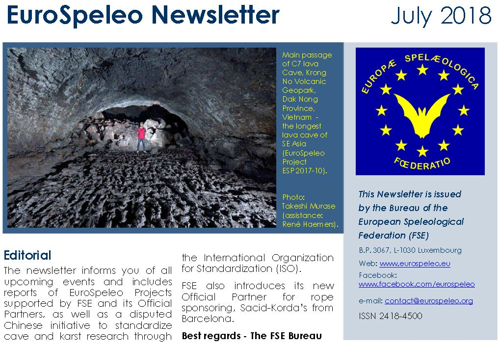 FSE Newsletter July 2018 EN